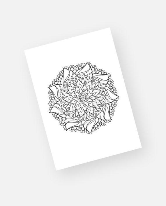 Floral mandala preview 7